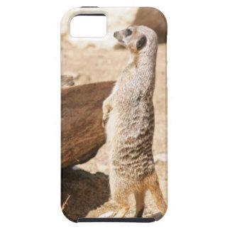 Meerkat Tough iPhone 5 Case