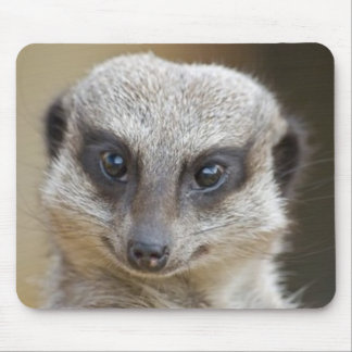 Meerkat Up Close Mouse Mat