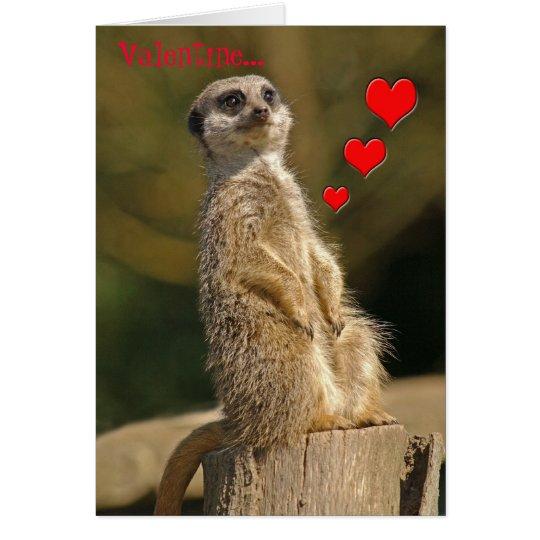 Meerkat Valentine Card 006