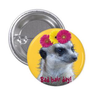 Meerkat with 3 bright gerber daisies 3 cm round badge