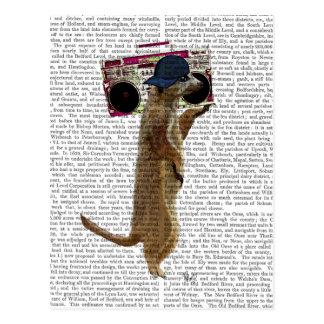 Meerkat with Boom Box Ghetto Blaster 2 Postcard