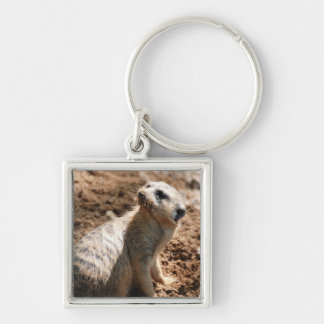 Meerkat with Dirty Face Keychain