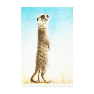 Meerkat Wrapped Canvas