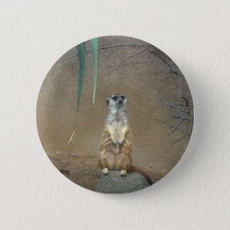 Meerkats 6 Cm Round Badge