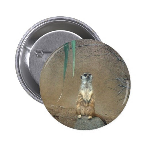 Meerkats Buttons