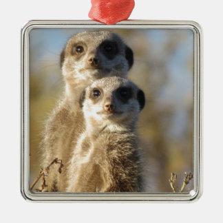 Meerkats Christmas Ornament
