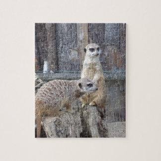 Meerkats Jigsaw Puzzle