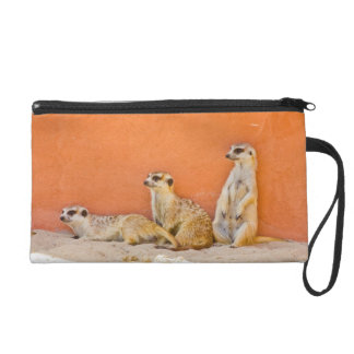 Meerkats On An Orange Wall Wristlet