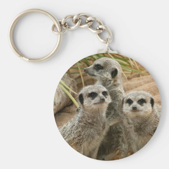 Meerkats on the lookout key ring