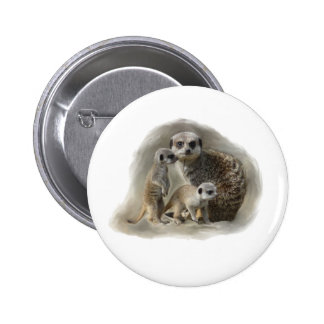 meerkats pins
