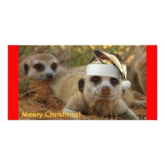 Meery Christmas Zaphod - Photo card