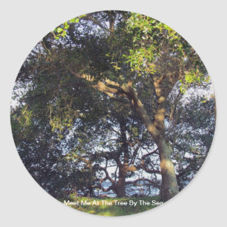 Meet Me At The Tree By The Sea Round Sticker