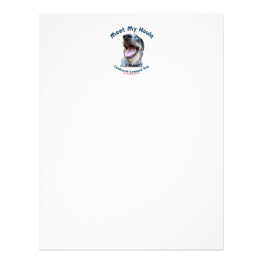 Meet My Catahoula Dog Flyer
