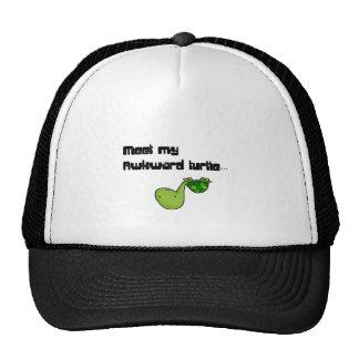 meet my turtle hat