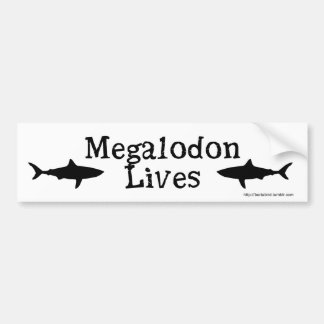 Megalodon Lives!  Bumper sticker