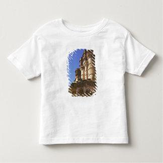 Meherangarh, the Majestic Fort, Jodhpur, Toddler T-Shirt