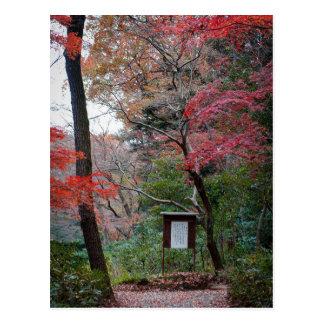 Meiji-Jingu Shrine Inner Garden Postcard