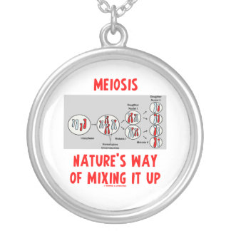Meiosis Nature s Way Of Mixing It Up Pendants