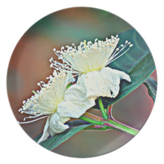 Melamine Plate @ Avocado Flower