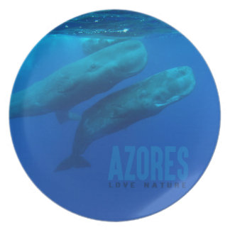 "Melamine Plate Azores ""love nature """