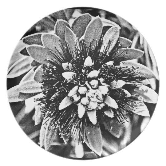 """Melamine Plate """"White Cactus Flower in B&W"""""""