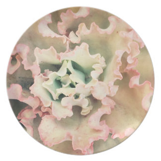 Melamine plate with salmon pink design from nature