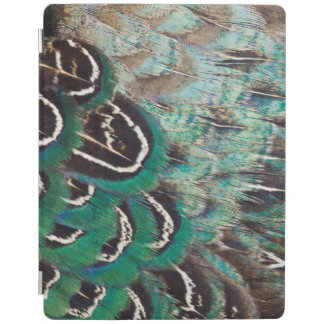 Melanistic Pheasant Feathers Close-Up iPad Cover