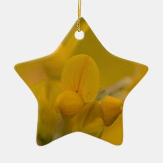 Mellow Yellow Ceramic Star Decoration