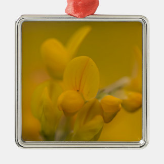 Mellow Yellow Silver-Colored Square Decoration