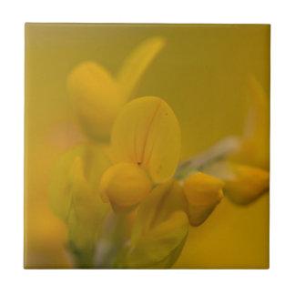 Mellow Yellow Tile