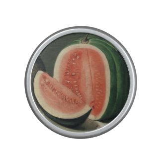 """Melons"" art bluetooth speaker"