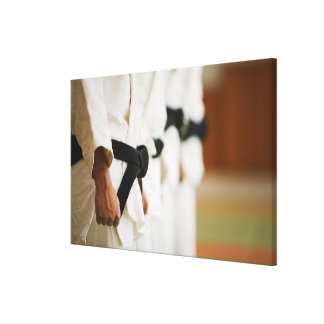 Members of a Judo Dojo Lined Up Canvas Print