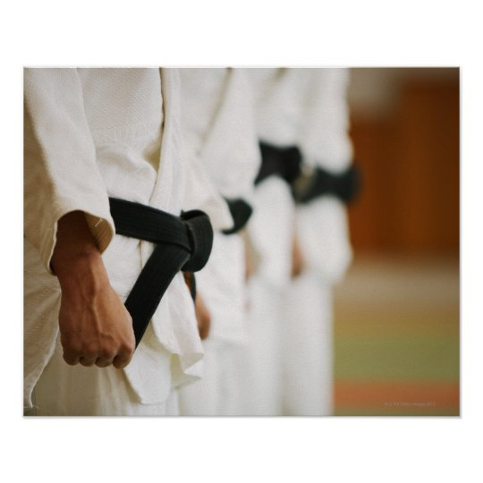 Members of a Judo Dojo Lined Up Poster