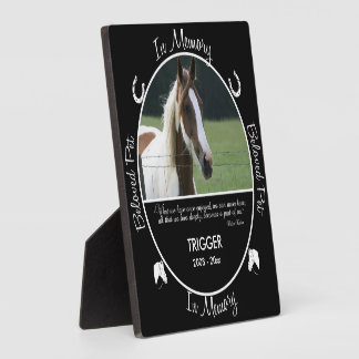 Memorial - Loss of Horse - Custom Photo/Name Plaque