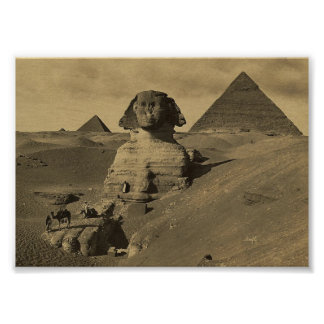 Men and Camels on the Paw of the Sphinx, Pyramids Poster