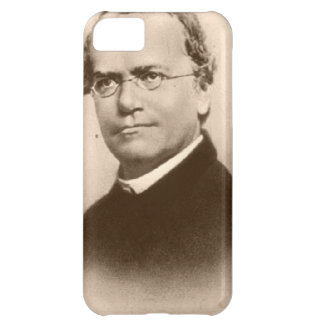 mendel case for iPhone 5C