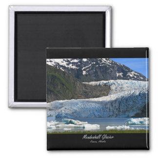 Mendenhall Glacier / Juneau Alaska Magnet