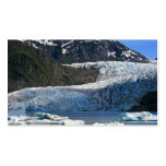 Mendenhall Glacier / Juneau Alaska Pack Of Standard Business Cards