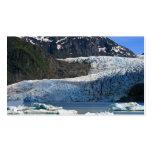 Mendenhall Glacier / Juneau Alaska Pack Of Standard Business Cards