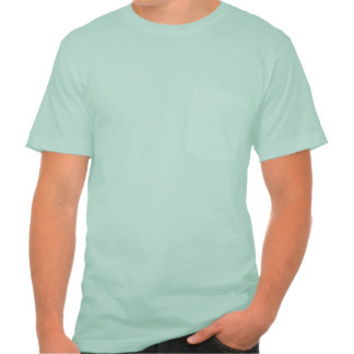 Men's  Apparel Pocket T-Shirt, 8 color choices Tee Shirts