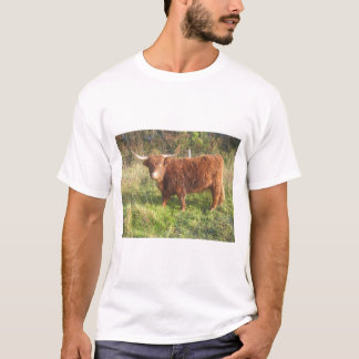 Men's Basic T-Shirt With Highland Cow