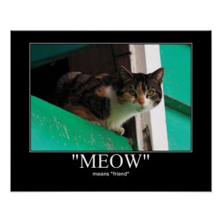 Meow Means Friend Cat Artwork Poster
