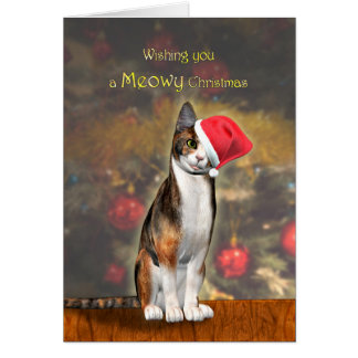 Meowey Christmas, a funny cat in a Christmas hat Card