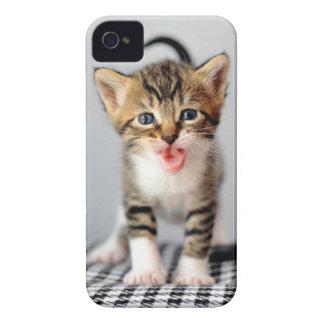 Meowing Kitten iPhone Case