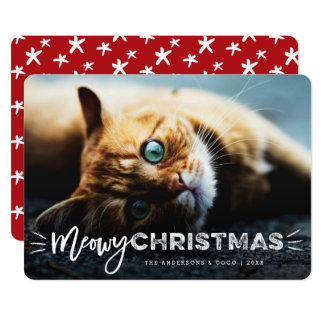 Meowy Christmas Brush Cat Lover Holiday Photo Card