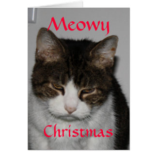 Meowy Christmas - Cat s Holiday Greeting Card