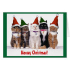 """""""Meowy Christmas!"""" Cats Card"""