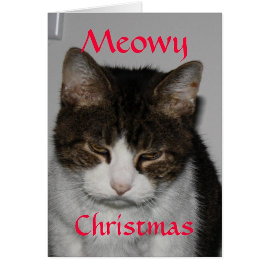 Meowy Christmas - Cat's Holiday Greeting Card