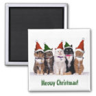 """Meowy Christmas!"" Cats In Hats Magnet"