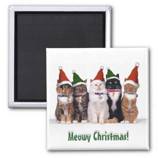 """""""Meowy Christmas!"""" Cats In Hats Fridge Magnets"""